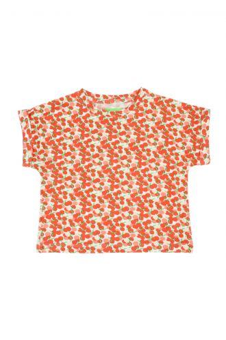 Fenna T-shirt Summer Berries