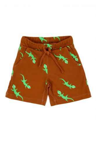 Levi Short Geckos